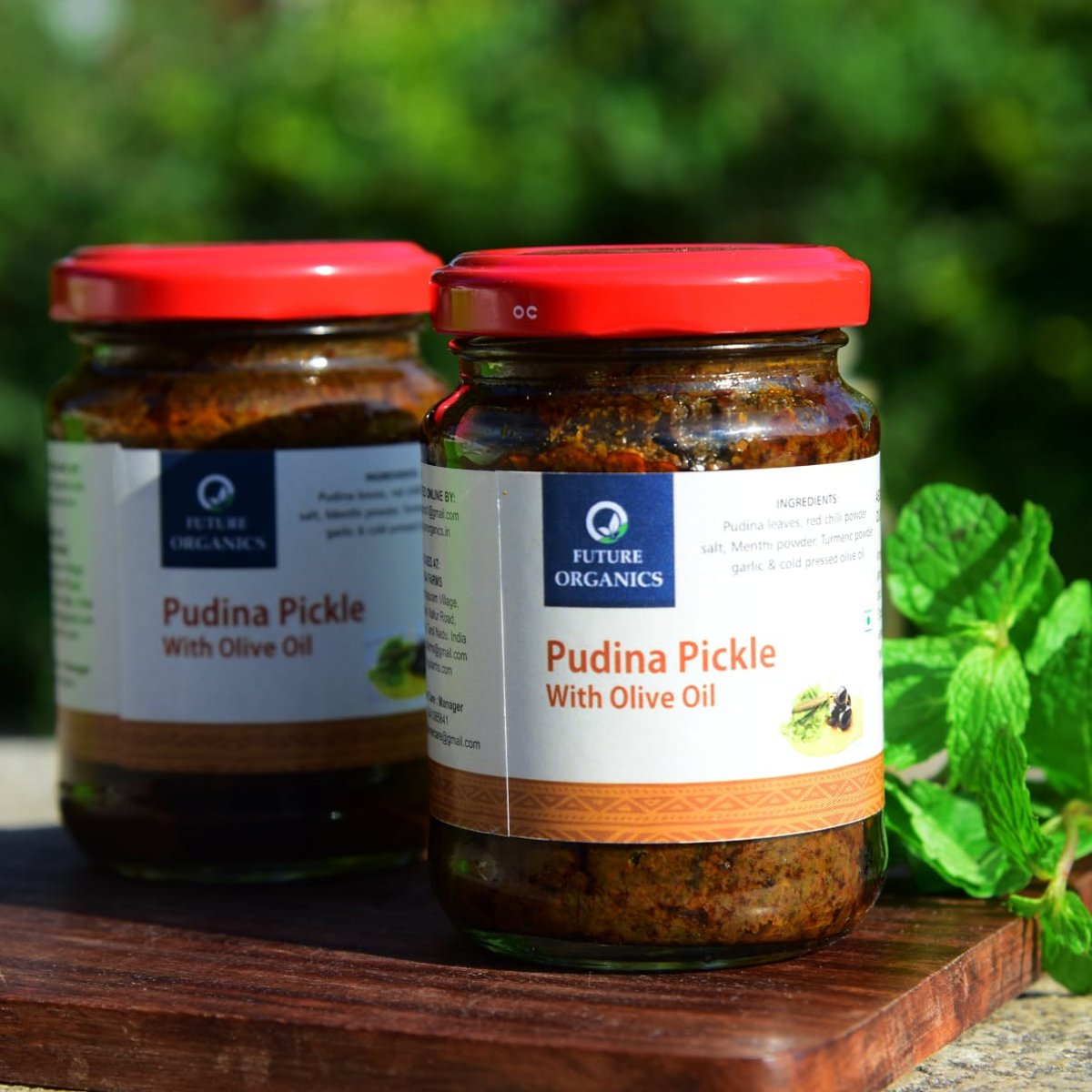 Pudina Pickle With Olive Oil(set of 2)
